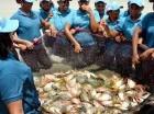 El Tamarindo, Bahoruco. Cincuenta mujeres cultivan tilapias y carpas en estanques con una superficie total de 32 tareas, como parte de la visita sorpresa del presidente Danilo Medina a la Asociación de Mujeres Merced Tamarindo, que opera una granja pisc