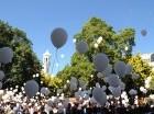 Más de 2 mil globos blancos fueron lanzados al aire en el Parque Colón en memoria de las víctimas de accidentes de tránsito que cada año pierden la vida en las carreteras.