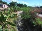 Hay plantaciones completas de sandía, berenjenas y otros rubros agrícolas afectados por la falta de agua. Mientras que el presidente Medina dispuso un fondo de RD$70 millones para afrontar el problema.