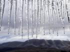 Estalacticas de hielo caen de un techo en el campo municipal de golf