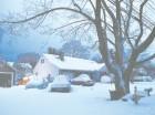 En Nueva York cayó menos nieve de lo esperado, aún así cubrió todo a su paso.