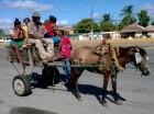 El Carreconcho de Boca Chica.